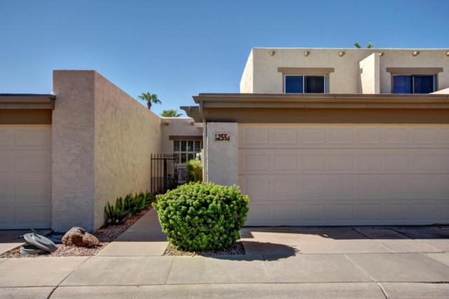 255 W Tainter Drive, Litchfield Park, AZ 85340 (MLS #5648686) :: Group 46:10