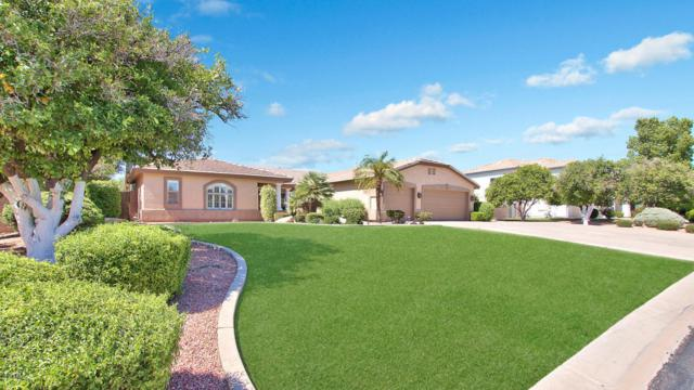 4216 E Fox Street, Mesa, AZ 85205 (MLS #5648702) :: The Laughton Team