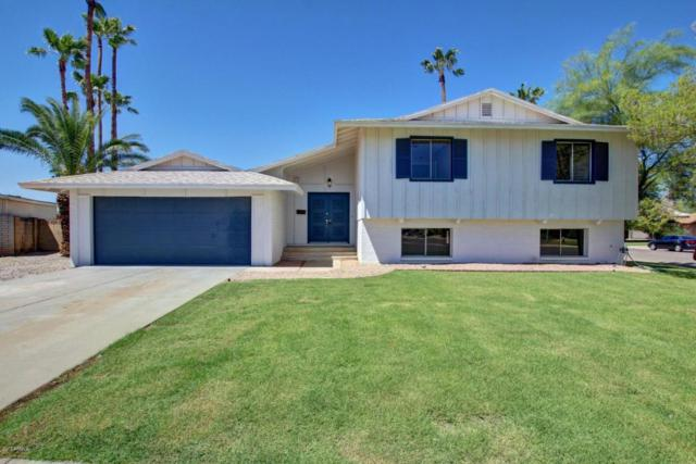 417 E Greenway Drive, Tempe, AZ 85282 (MLS #5648751) :: 10X Homes