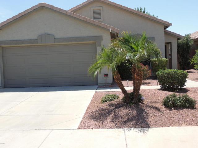 15839 W Saguaro Lane, Surprise, AZ 85374 (MLS #5648861) :: 10X Homes