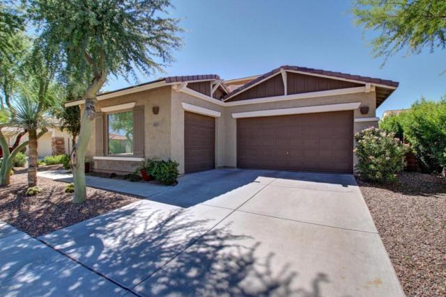 635 E Bellerive Place, Chandler, AZ 85249 (MLS #5648954) :: 10X Homes