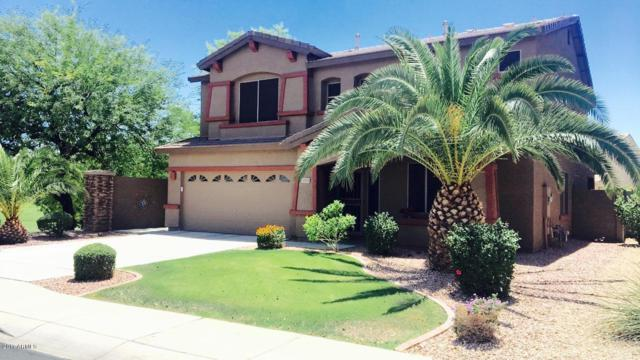 14755 W Windrose Drive, Surprise, AZ 85379 (MLS #5649023) :: The AZ Performance Realty Team