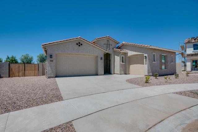 19452 S 193RD Place, Queen Creek, AZ 85142 (MLS #5649063) :: The Pete Dijkstra Team