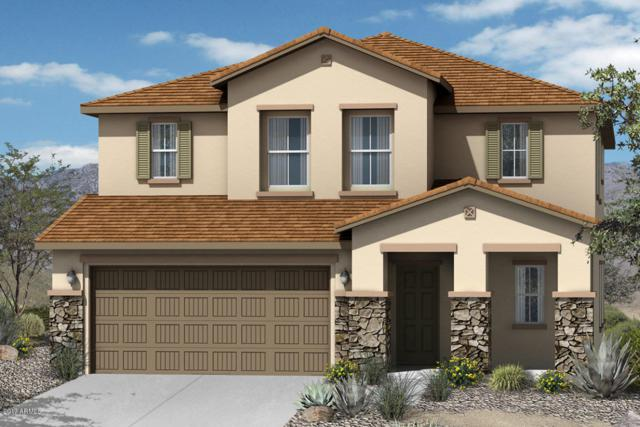 2712 S 172ND Lane, Goodyear, AZ 85338 (MLS #5649074) :: Occasio Realty