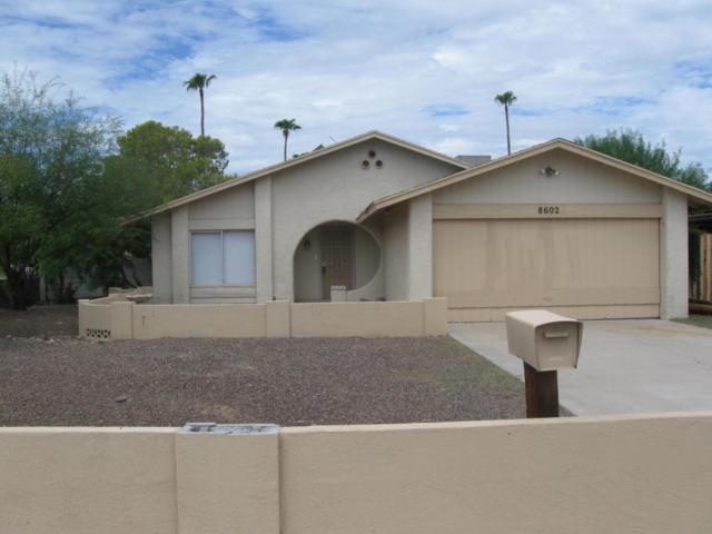 8602 N 55TH Avenue, Glendale, AZ 85302 (MLS #5649091) :: 10X Homes