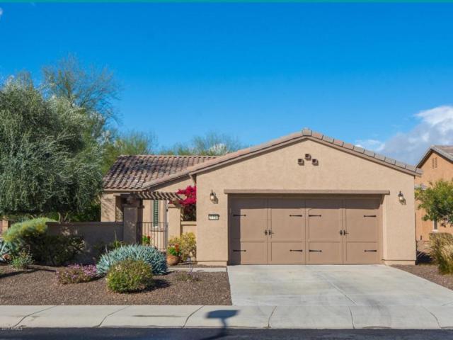 27758 N 130th Lane, Peoria, AZ 85383 (MLS #5649174) :: 10X Homes