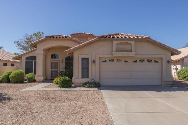 12413 W Windsor Avenue, Avondale, AZ 85392 (MLS #5649179) :: Brett Tanner Home Selling Team