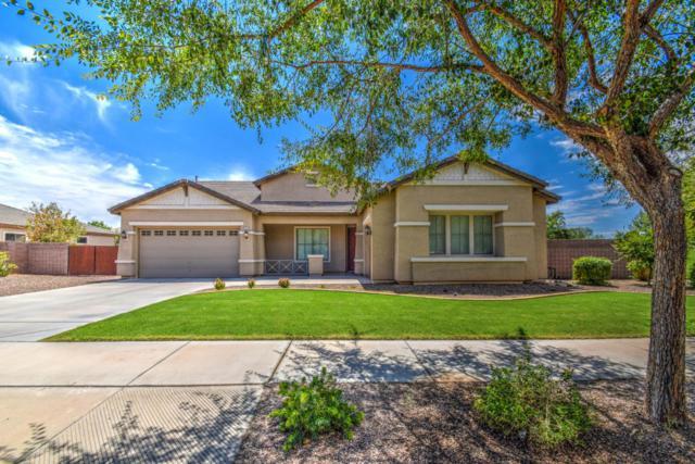 18415 E Macaw Drive, Queen Creek, AZ 85142 (MLS #5649201) :: Brett Tanner Home Selling Team