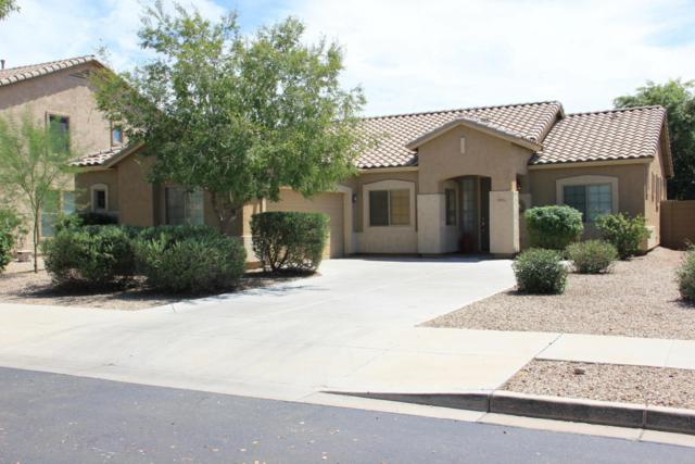 19915 E Mayberry Road, Queen Creek, AZ 85142 (MLS #5649206) :: Brett Tanner Home Selling Team