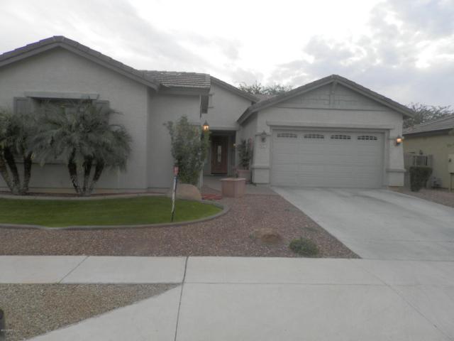 8437 W Northview Avenue, Glendale, AZ 85305 (MLS #5649246) :: The AZ Performance Realty Team