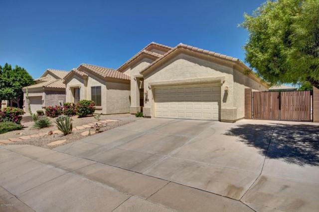 8710 E Hobart Street, Mesa, AZ 85207 (MLS #5649256) :: Brett Tanner Home Selling Team