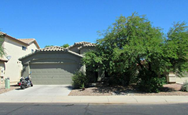 42286 W Chambers Drive, Maricopa, AZ 85138 (MLS #5649265) :: Group 46:10