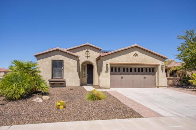 13044 W Fetlock Trail, Peoria, AZ 85383 (MLS #5649283) :: Brett Tanner Home Selling Team