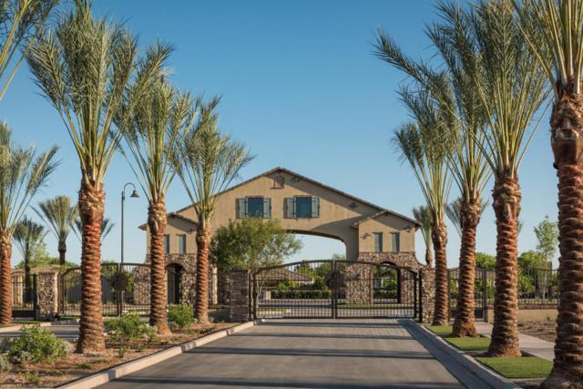2125 N Citrus Cove, Mesa, AZ 85213 (MLS #5649288) :: Brett Tanner Home Selling Team