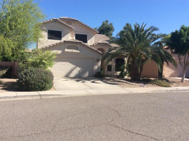 6424 W Wahalla Lane, Glendale, AZ 85308 (MLS #5649317) :: The AZ Performance Realty Team