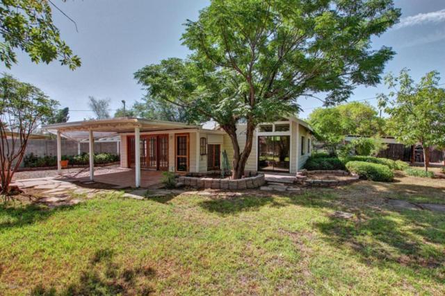 1049 E Spence Avenue, Tempe, AZ 85281 (MLS #5649354) :: Brett Tanner Home Selling Team