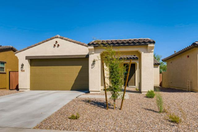 13161 N 91ST Drive, Peoria, AZ 85381 (MLS #5649380) :: The AZ Performance Realty Team