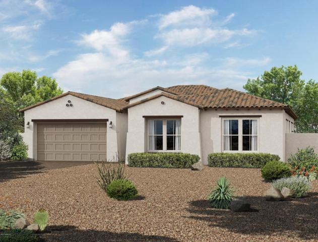12731 N 145TH Avenue, Surprise, AZ 85379 (MLS #5649397) :: The AZ Performance Realty Team
