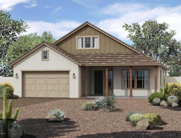 12349 N 145TH Avenue, Surprise, AZ 85379 (MLS #5649400) :: Brett Tanner Home Selling Team