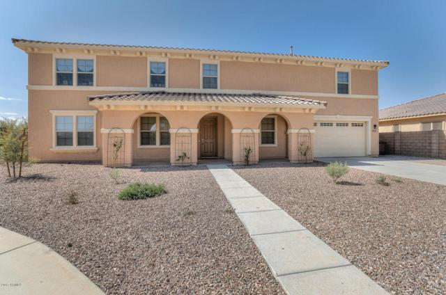 21435 E Waverly Drive, Queen Creek, AZ 85142 (MLS #5649416) :: The Bill and Cindy Flowers Team