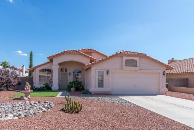 7541 W Hearn Road, Peoria, AZ 85381 (MLS #5649427) :: Occasio Realty