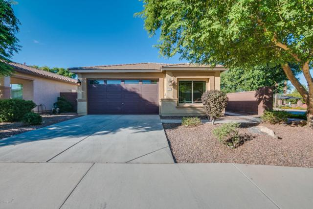 337 W Reeves Avenue, San Tan Valley, AZ 85140 (MLS #5649463) :: The Bill and Cindy Flowers Team