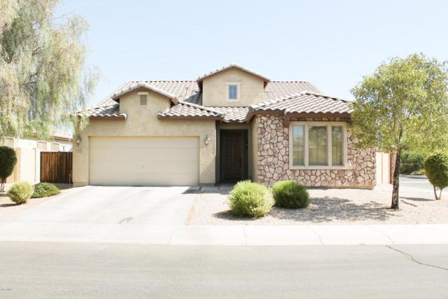 3982 E Zion Place, Chandler, AZ 85249 (MLS #5649474) :: The Bill and Cindy Flowers Team