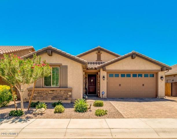 93 E Prescott Drive, Chandler, AZ 85249 (MLS #5649555) :: The Bill and Cindy Flowers Team