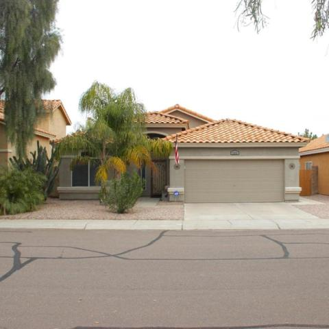 2860 W Park Avenue, Chandler, AZ 85224 (MLS #5649559) :: Group 46:10
