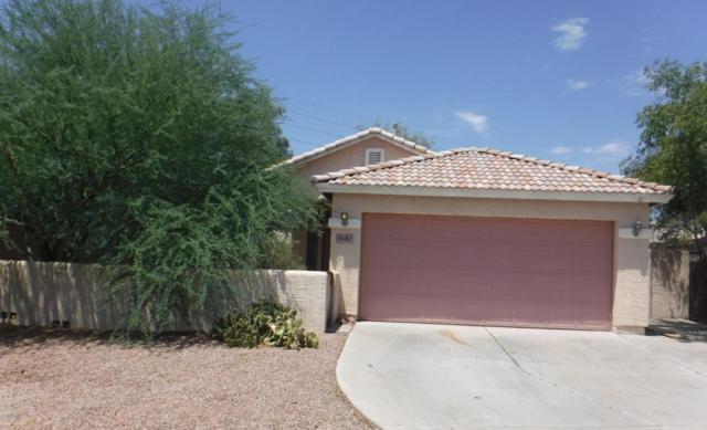5582 N 78TH Drive, Glendale, AZ 85303 (MLS #5649591) :: Group 46:10