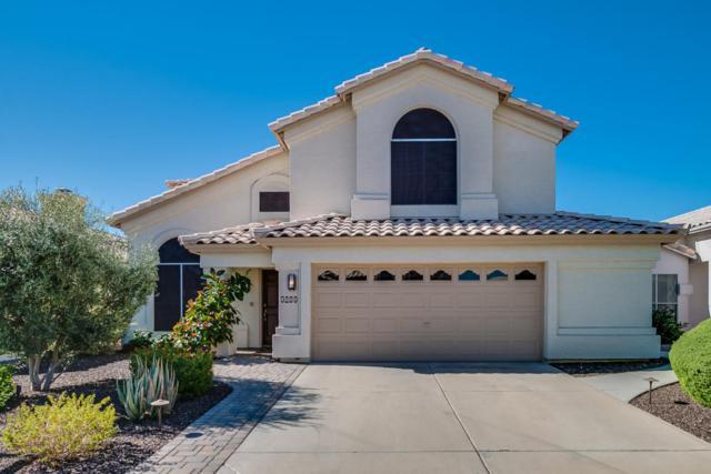9269 E Wood Drive, Scottsdale, AZ 85260 (MLS #5649633) :: Group 46:10