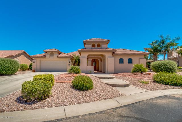 3105 N 149TH Lane, Goodyear, AZ 85395 (MLS #5649688) :: Occasio Realty