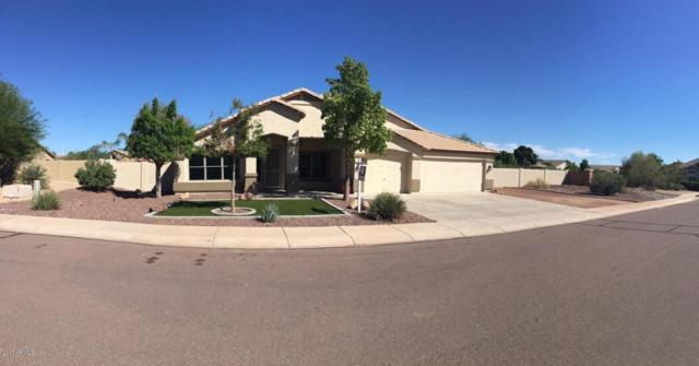 22973 N 104TH Avenue, Peoria, AZ 85383 (MLS #5649689) :: Occasio Realty