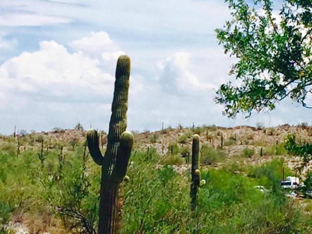 0 S Homestead Lane, Queen Creek, AZ 85142 (MLS #5649719) :: Group 46:10