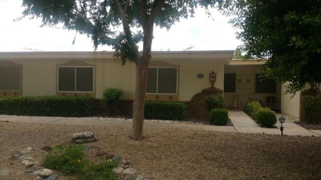9943 W Hutton Drive, Sun City, AZ 85351 (MLS #5649733) :: Occasio Realty
