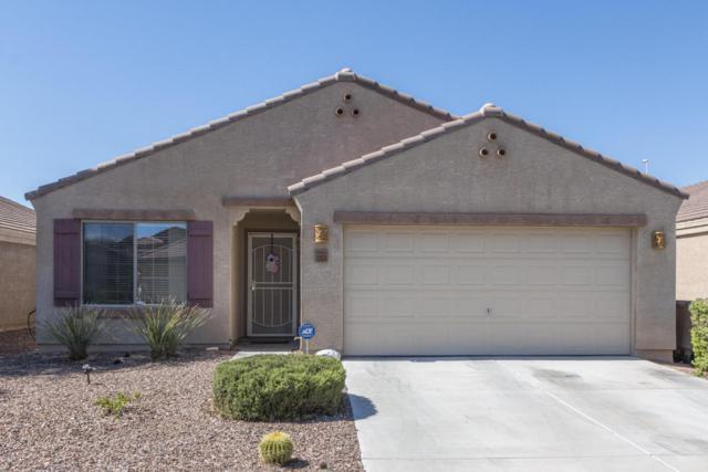 12024 W Dos Rios Drive, Sun City, AZ 85373 (MLS #5649735) :: Occasio Realty