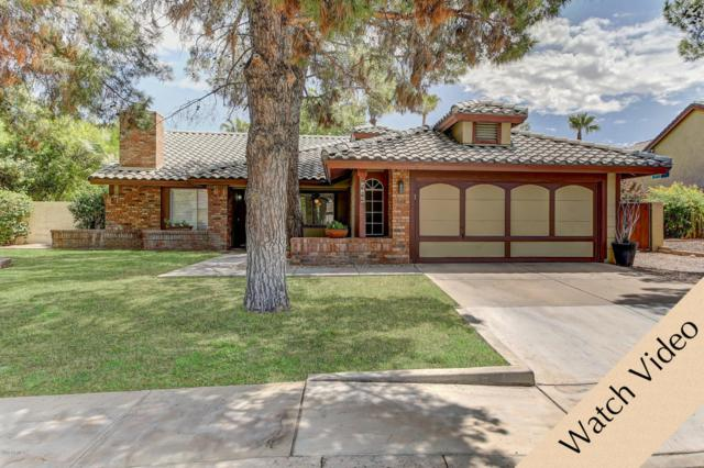 943 N Senate Street, Chandler, AZ 85225 (MLS #5649741) :: Group 46:10