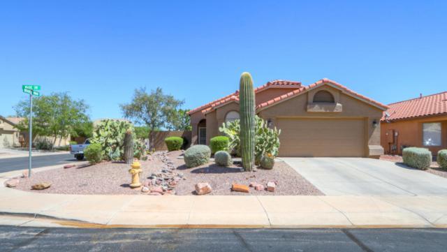 44010 W Wade Drive, Maricopa, AZ 85138 (MLS #5649756) :: Group 46:10
