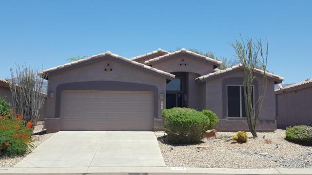 8302 E Masters Road, Gold Canyon, AZ 85118 (MLS #5649775) :: The Bill and Cindy Flowers Team