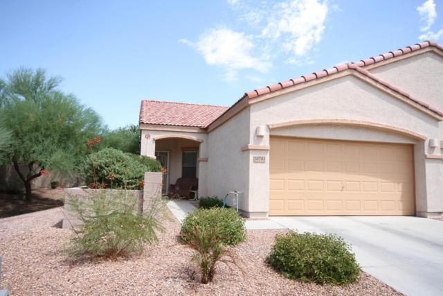 10703 N 70TH Avenue, Peoria, AZ 85345 (MLS #5649785) :: Group 46:10