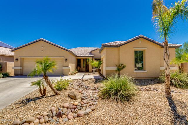 15723 W Shangri La Road, Surprise, AZ 85379 (MLS #5649793) :: Group 46:10