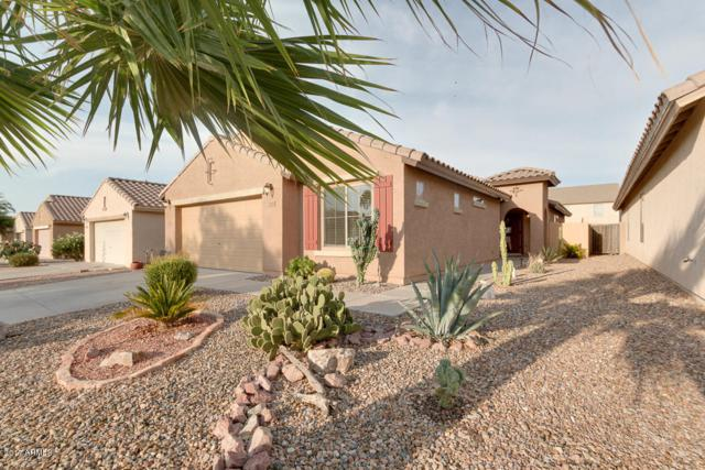 33051 N Quarry Hills Drive, San Tan Valley, AZ 85143 (MLS #5649810) :: The Bill and Cindy Flowers Team