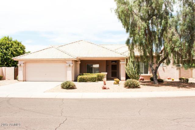 13364 W Wilshire Drive, Goodyear, AZ 85395 (MLS #5649817) :: Occasio Realty