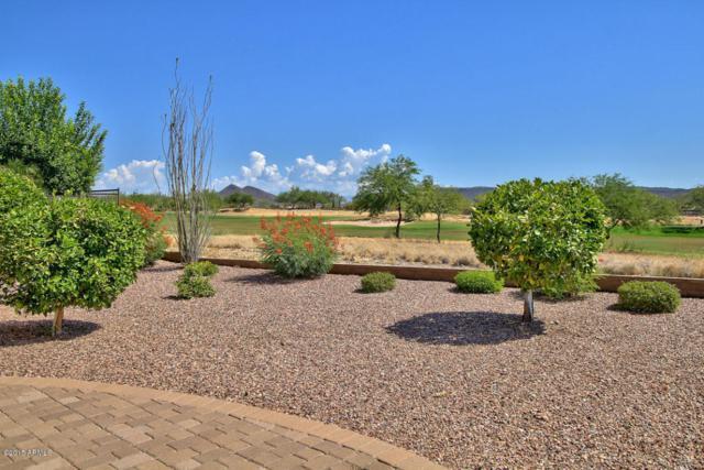 28347 N 123RD Lane, Peoria, AZ 85383 (MLS #5649821) :: Occasio Realty