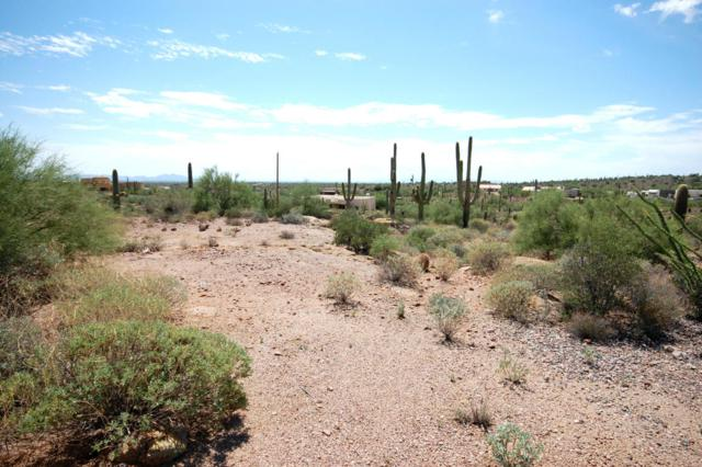 3480 N Val Vista Road, Apache Junction, AZ 85119 (MLS #5649854) :: The Bill and Cindy Flowers Team