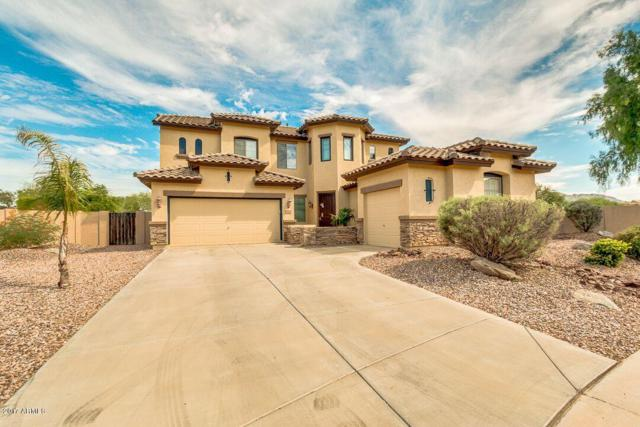 3977 E Powell Court, Gilbert, AZ 85298 (MLS #5649869) :: Occasio Realty
