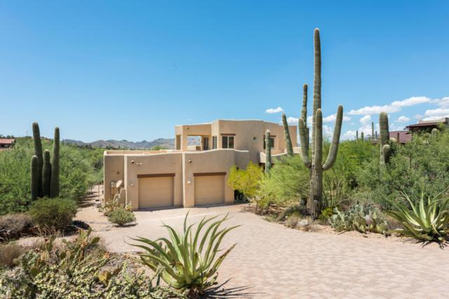 6585 E Military Road, Cave Creek, AZ 85331 (MLS #5649874) :: Occasio Realty