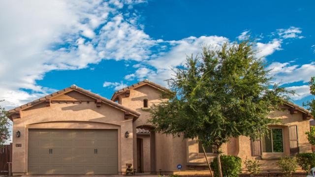 861 E Boston Street, Gilbert, AZ 85295 (MLS #5649905) :: Occasio Realty