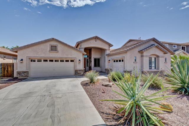 13227 W Rhine Lane, Litchfield Park, AZ 85340 (MLS #5650152) :: Keller Williams Realty Phoenix