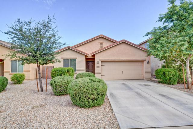 10582 E Sunflower Lane, Florence, AZ 85132 (MLS #5650416) :: Keller Williams Realty Phoenix